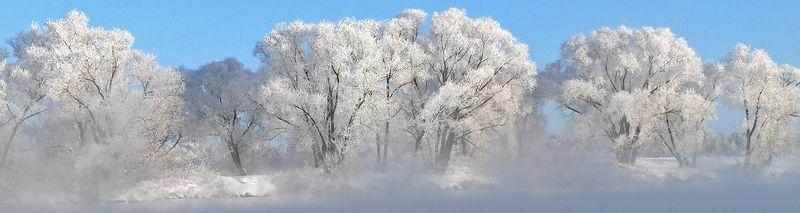 Winter c.jpg