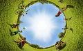 Миниатюра для версии от 01:18, 31 мая 2012