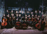 Kosheleva.orchestra.jpg